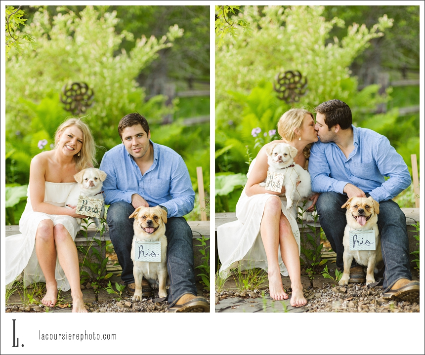 duluth engagement photos with dogs